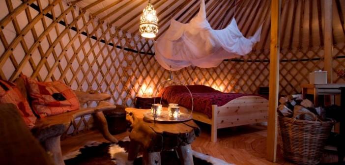 Alles over yurts: steppetent in de duinen van Texel