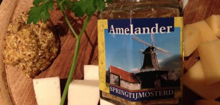 From Ameland with love: springtijmosterd