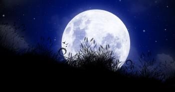 Nacht van de Nacht