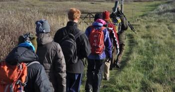 november-wandelmaand-schiermonnikoog
