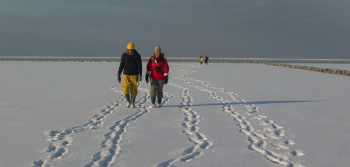 Wadlopen in de winter: rust en winterse vergezichten